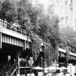 Un paseo por la High Line