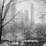 Qué hacer en Central Park en invierno: ideas para no pasar frío