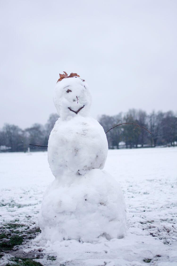 que hacer en central park en invierno