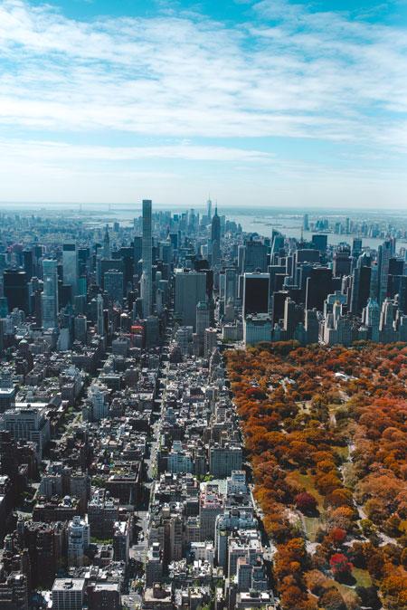 Alto y Bajo Manhattan comprar entradas