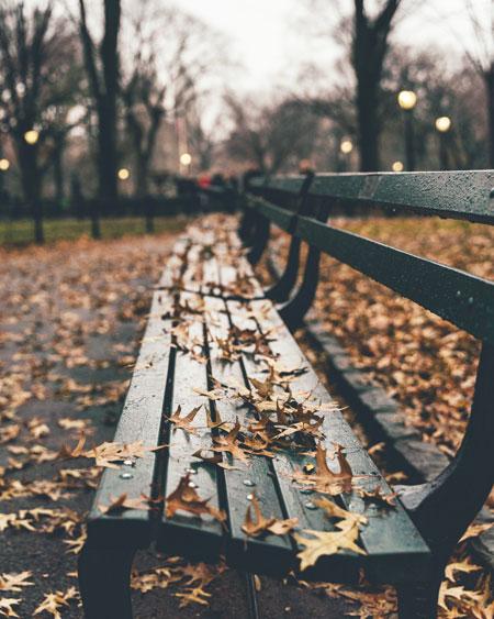 Central Park recorrido