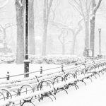 Mini guía de Nueva York en febrero