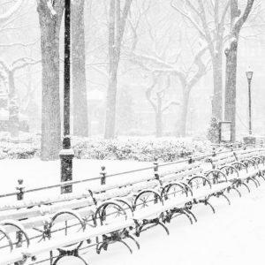 febrero en nueva york
