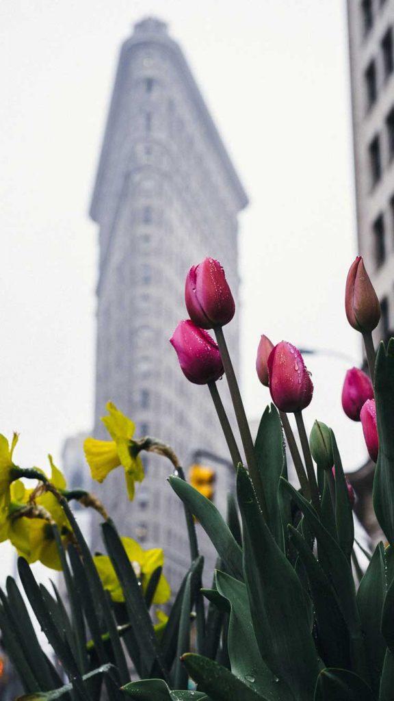 Nueva York en abril